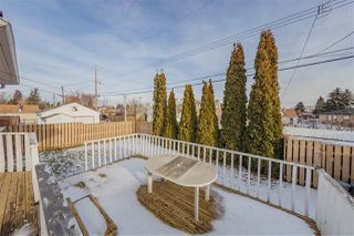 Photo 24: 11119 118 Street NW in Edmonton: Zone 08 House for sale : MLS®# E4136209