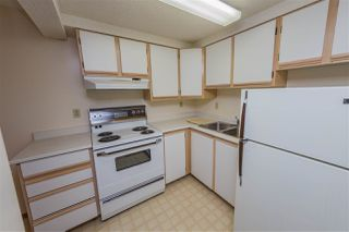 Photo 21: 11119 118 Street NW in Edmonton: Zone 08 House for sale : MLS®# E4136209