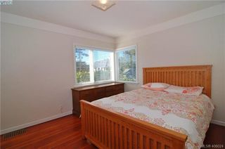 Photo 10: 330 Richmond Ave in VICTORIA: Vi Fairfield East Single Family Detached for sale (Victoria)  : MLS®# 806898