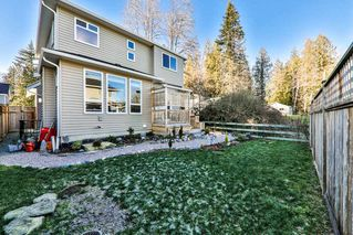 Photo 19: 11242 242A Street in Maple Ridge: Cottonwood MR House for sale : MLS®# R2346733
