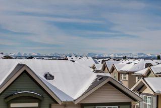Photo 10: 3411 310 MCKENZIE TOWNE Gate SE in Calgary: McKenzie Towne Apartment for sale : MLS®# C4232426