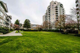 "Photo 20: 310 4990 MCGEER Street in Vancouver: Collingwood VE Condo for sale in ""CONNAUGHT"" (Vancouver East)  : MLS®# R2351638"