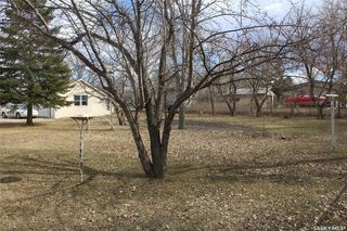 Photo 30: 102 Galloway Street in Lampman: Residential for sale : MLS®# SK766530