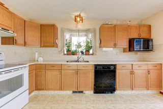 Photo 6: 15711 78 Street in Edmonton: Zone 28 House for sale : MLS®# E4153286
