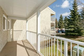 Photo 22: 202 340 WOODBRIDGE Way: Sherwood Park Condo for sale : MLS®# E4155803