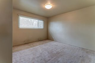 Photo 13: 7524 77 Avenue in Edmonton: Zone 17 House for sale : MLS®# E4156959