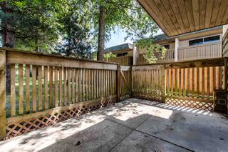 "Photo 18: 11662 RITCHIE Avenue in Maple Ridge: East Central Townhouse for sale in ""CEDAR GROVE III"" : MLS®# R2383960"