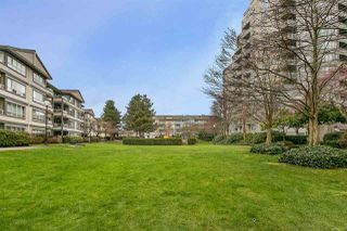 "Photo 12: 707 3489 ASCOT Place in Vancouver: Collingwood VE Condo for sale in ""Regent Court"" (Vancouver East)  : MLS®# R2441538"