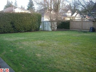 Photo 8: 21764 50TH Avenue in Langley: Murrayville House for sale : MLS®# F1103774