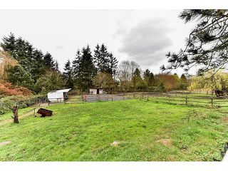 Photo 20: 17523 HILLVIEW Place in Surrey: Grandview Surrey House for sale (South Surrey White Rock)  : MLS®# F1443017