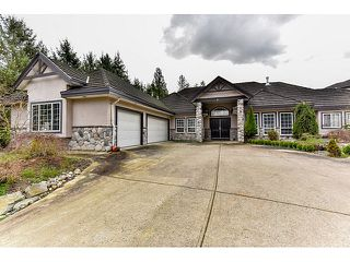 "Photo 1: 8461 WILDWOOD Place in Surrey: Fleetwood Tynehead House for sale in ""Tynehead"" : MLS®# R2047697"
