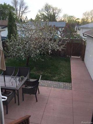 Photo 17: 46 Russenholt Street in Winnipeg: Crestview Residential for sale (5H)  : MLS®# 1712454