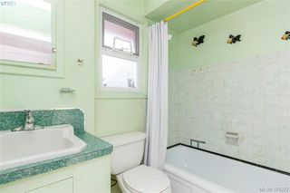 Photo 9: 4138 Carey Road in VICTORIA: SW Glanford Single Family Detached for sale (Saanich West)  : MLS®# 379222