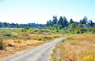 Photo 18: 4138 Carey Road in VICTORIA: SW Glanford Single Family Detached for sale (Saanich West)  : MLS®# 379222