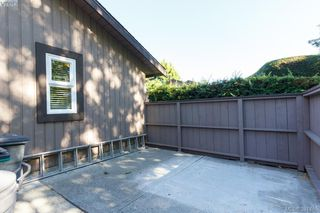 Photo 17: 12 4056 N Livingstone Ave in VICTORIA: SE Mt Doug Row/Townhouse for sale (Saanich East)  : MLS®# 766389