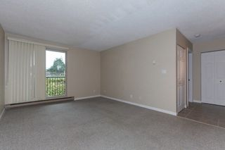 Photo 5: 303 1121 HOWIE AVENUE in Coquitlam: Central Coquitlam Condo for sale : MLS®# R2218435