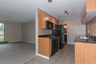 Photo 9: 303 1121 HOWIE AVENUE in Coquitlam: Central Coquitlam Condo for sale : MLS®# R2218435