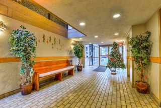 """Photo 19: 502 9672 134 Street in Surrey: Whalley Condo for sale in """"Parkswood (Dogwood Building)"""" (North Surrey)  : MLS®# R2230294"""