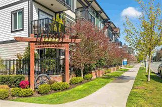 """Photo 17: 203 5665 177B Street in Surrey: Cloverdale BC Condo for sale in """"LINGO"""" (Cloverdale)  : MLS®# R2259852"""
