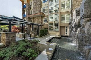 """Photo 1: 217 2495 WILSON Avenue in Port Coquitlam: Central Pt Coquitlam Condo for sale in """"ORCHID"""" : MLS®# R2287984"""