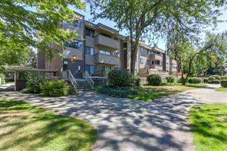 Main Photo: 34 2438 WILSON Avenue in Port Coquitlam: Central Pt Coquitlam Condo for sale : MLS®# R2290577