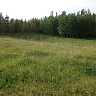 Photo 5: 1-51222 Rge Road 270: Rural Parkland County Rural Land/Vacant Lot for sale : MLS®# E4133494