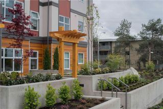 Photo 5: 312 3333 Glasgow Avenue in VICTORIA: SE Quadra Condo Apartment for sale (Saanich East)  : MLS®# 405749