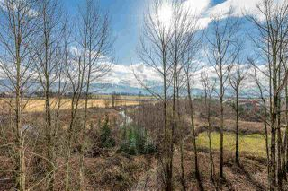 """Photo 17: 315 2238 WHATCOM Road in Abbotsford: Abbotsford East Condo for sale in """"Waterleaf"""" : MLS®# R2348606"""