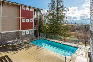 """Photo 19: 315 2238 WHATCOM Road in Abbotsford: Abbotsford East Condo for sale in """"Waterleaf"""" : MLS®# R2348606"""