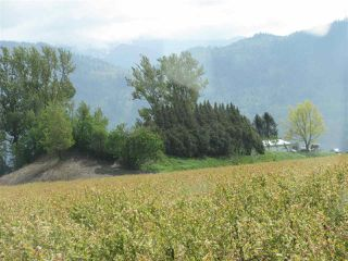Photo 6: 38604 NO. 5 Road in Abbotsford: Sumas Prairie House for sale : MLS®# R2362035