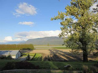 Photo 5: 38604 NO. 5 Road in Abbotsford: Sumas Prairie House for sale : MLS®# R2362035