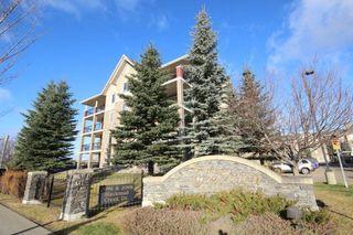 Main Photo: 217 2098 BLACKMUD CREEK Drive in Edmonton: Zone 55 Condo for sale : MLS®# E4179537