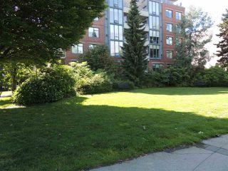 """Photo 24: 110 2228 MARSTRAND Avenue in Vancouver: Kitsilano Condo for sale in """"SOLO"""" (Vancouver West)  : MLS®# R2466105"""