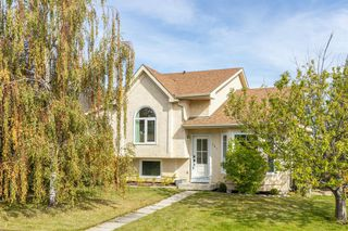 Main Photo: 181 HARVEST GLEN Place NE in Calgary: Harvest Hills Detached for sale : MLS®# A1035959