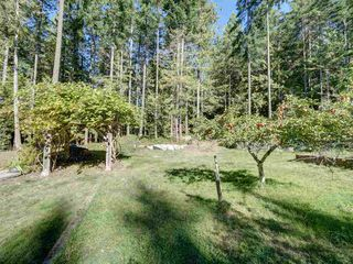 "Photo 40: 3223 - 3227 CRYSTAL Road: Roberts Creek House for sale in ""UPPER ROBERTS CREEK"" (Sunshine Coast)  : MLS®# R2502377"