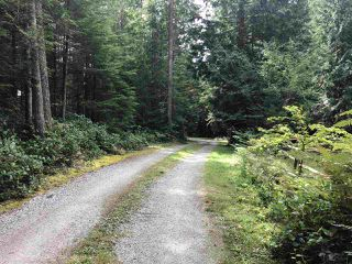 "Photo 3: 3223 - 3227 CRYSTAL Road: Roberts Creek House for sale in ""UPPER ROBERTS CREEK"" (Sunshine Coast)  : MLS®# R2502377"