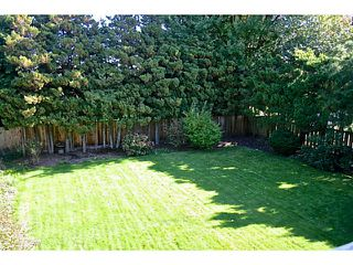 Photo 10: 3580 BARGEN DR in : East Cambie House for sale : MLS®# V1031045