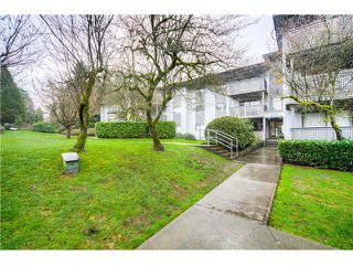 "Photo 13: 146 200 WESTHILL Place in Port Moody: College Park PM Condo for sale in ""WESTHILL PLACE"" : MLS®# V1110203"