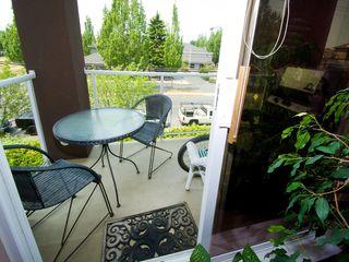 """Photo 6: 214 4768 53RD Street in Ladner: Delta Manor Condo for sale in """"SUNNINGDALE IV"""" : MLS®# V1133239"""