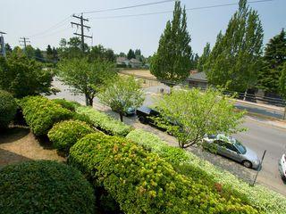"""Photo 7: 214 4768 53RD Street in Ladner: Delta Manor Condo for sale in """"SUNNINGDALE IV"""" : MLS®# V1133239"""