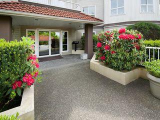 """Photo 13: 214 4768 53RD Street in Ladner: Delta Manor Condo for sale in """"SUNNINGDALE IV"""" : MLS®# V1133239"""