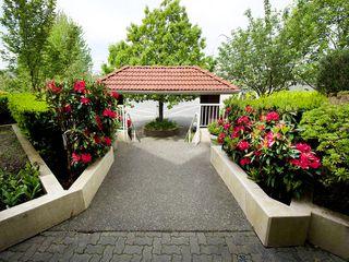 """Photo 14: 214 4768 53RD Street in Ladner: Delta Manor Condo for sale in """"SUNNINGDALE IV"""" : MLS®# V1133239"""