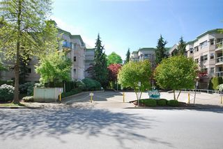"Photo 14: 203A 2615 JANE Street in Port Coquitlam: Central Pt Coquitlam Condo for sale in ""BURLEIGH GREEN"" : MLS®# R2090687"