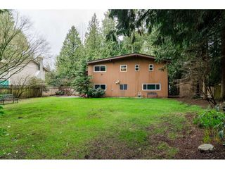 """Photo 18: 3880 198 Street in Langley: Brookswood Langley House for sale in """"Brookswood"""" : MLS®# R2145669"""