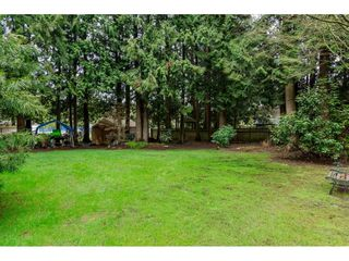 """Photo 19: 3880 198 Street in Langley: Brookswood Langley House for sale in """"Brookswood"""" : MLS®# R2145669"""