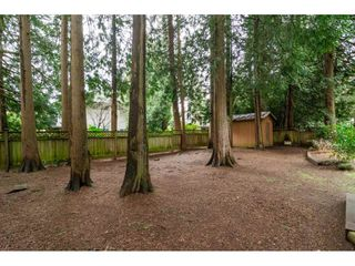 """Photo 20: 3880 198 Street in Langley: Brookswood Langley House for sale in """"Brookswood"""" : MLS®# R2145669"""