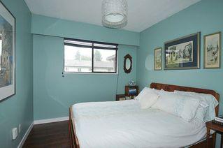 Photo 9: 11582 196B Street in Pitt Meadows: South Meadows House for sale : MLS®# R2288159