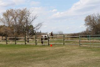 Photo 34: 56027 Rge Rd 14: Rural Lac Ste. Anne County House for sale : MLS®# E4137925