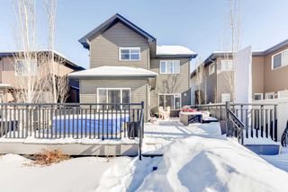 Photo 27: 1420 CHAHLEY Place in Edmonton: Zone 20 House for sale : MLS®# E4146343