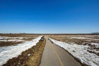 Photo 31: 35 DEERMOSS Place SE in Calgary: Deer Run Detached for sale : MLS®# C4233869